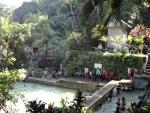 "zwemmen in ""Hot springs""  (de warmwaterbron)."